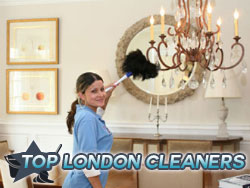 domestic-cleaners